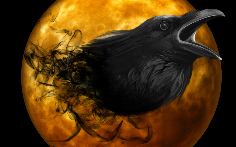 Raven's Profile & Videos - PORN XS - 56119