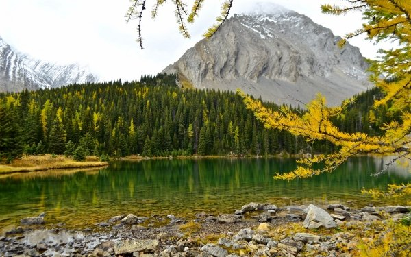 Earth Lake Lakes Alberta Canada Fall Mountain Forest HD Wallpaper | Background Image