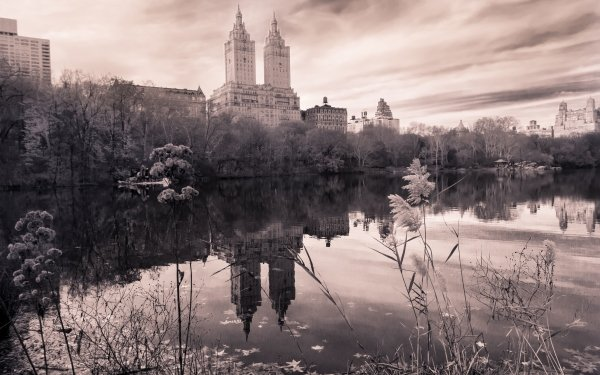 Man Made Central Park New York Park Building Architecture Water Reflection HD Wallpaper   Background Image