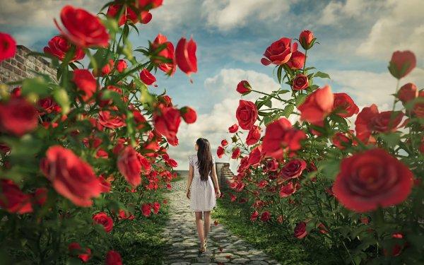 Women Rear Fantasy Flower Rose HD Wallpaper | Background Image