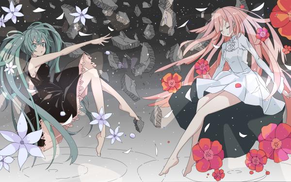 Anime Vocaloid Hatsune Miku Luka Megurine Twintails Long Hair Pink Hair Blue Hair Blue Eyes Flower Music Black Dress White Dress HD Wallpaper | Background Image