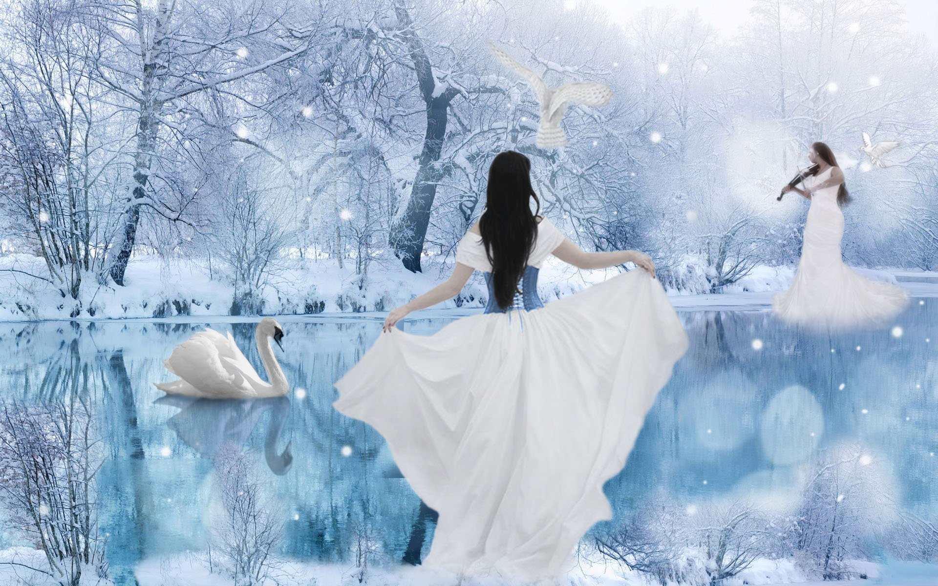 Winter Fantasy Fond D Ecran Hd Arriere Plan 1920x1200 Id