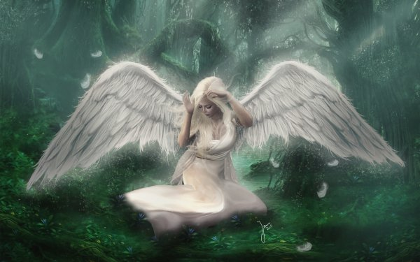 Fantasy Angel Forest Sad White Hair Wings HD Wallpaper | Background Image