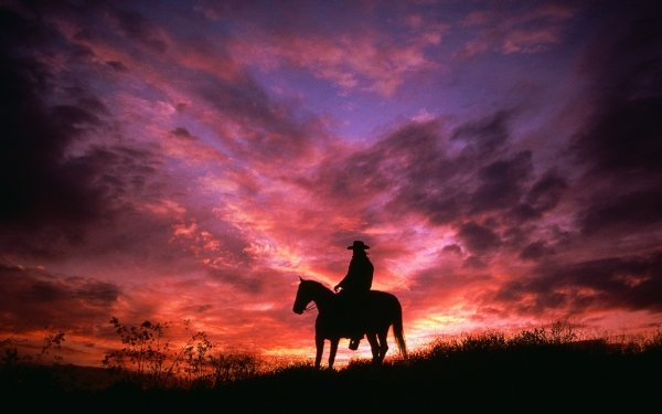 Photography Cowboy Horse Sunset Silhouette Sky Pink Purple HD Wallpaper | Background Image