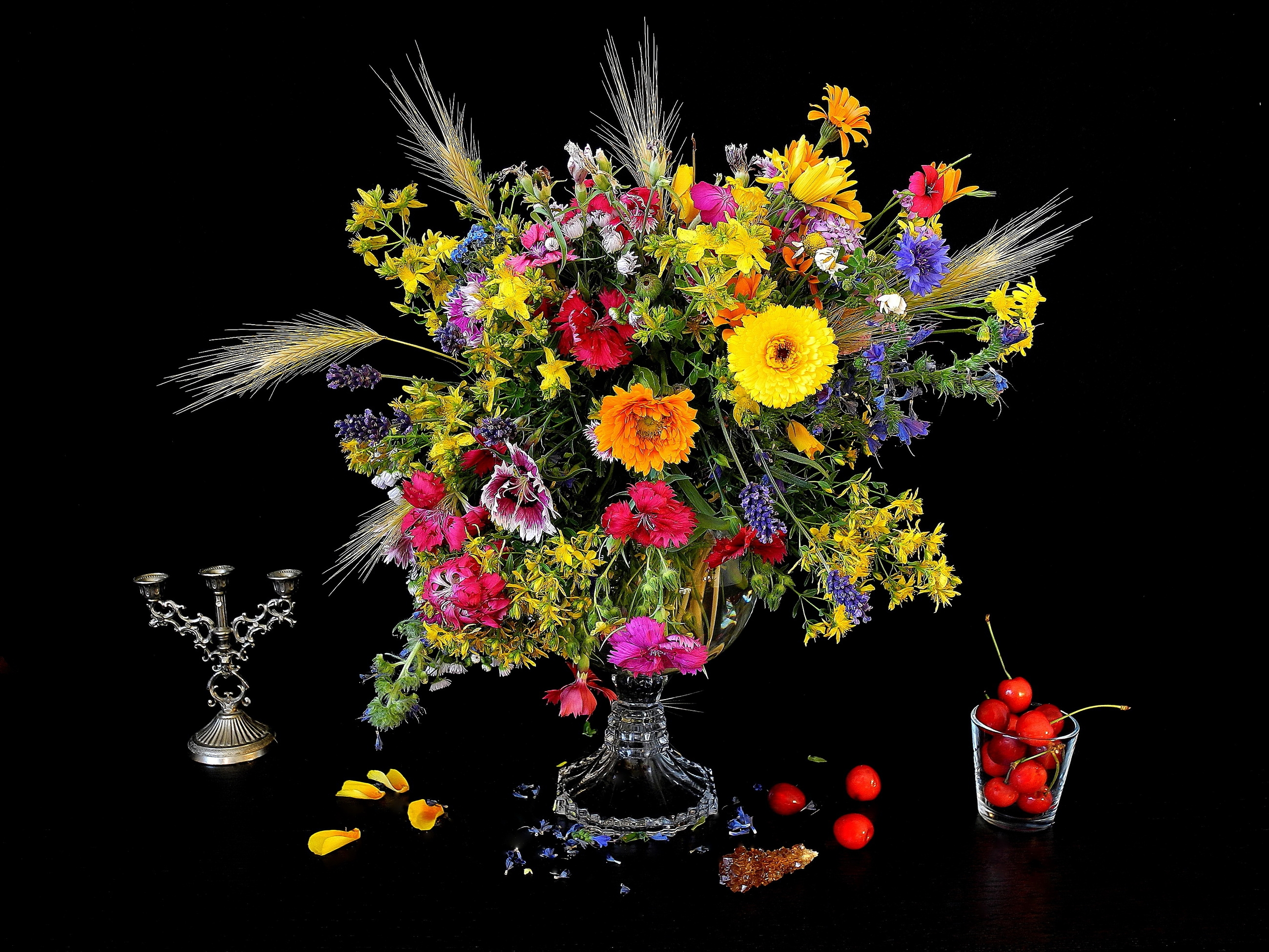 Free Colorful Flower Wallpaper Downloads: Colorful Flowers On Black Background HD Wallpaper