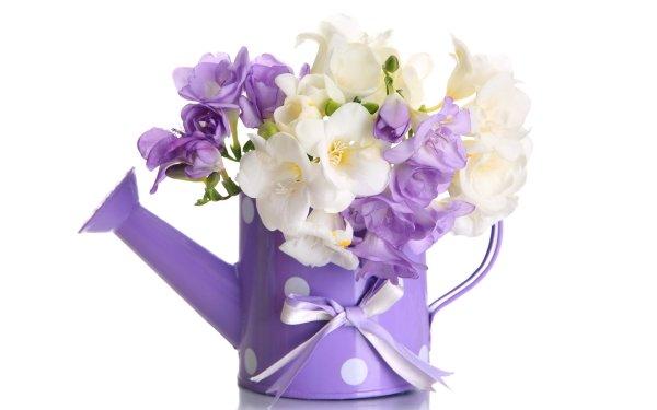 Man Made Flower Violet White Flower Purple Flower HD Wallpaper   Background Image