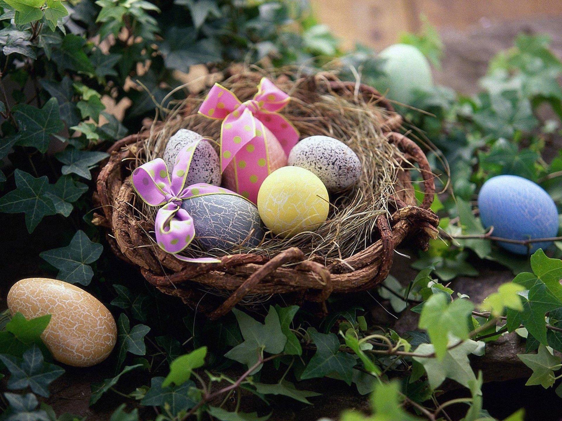 节日 - 复活节  蛋 Basket Vine Nest bow (Clothing) 壁纸