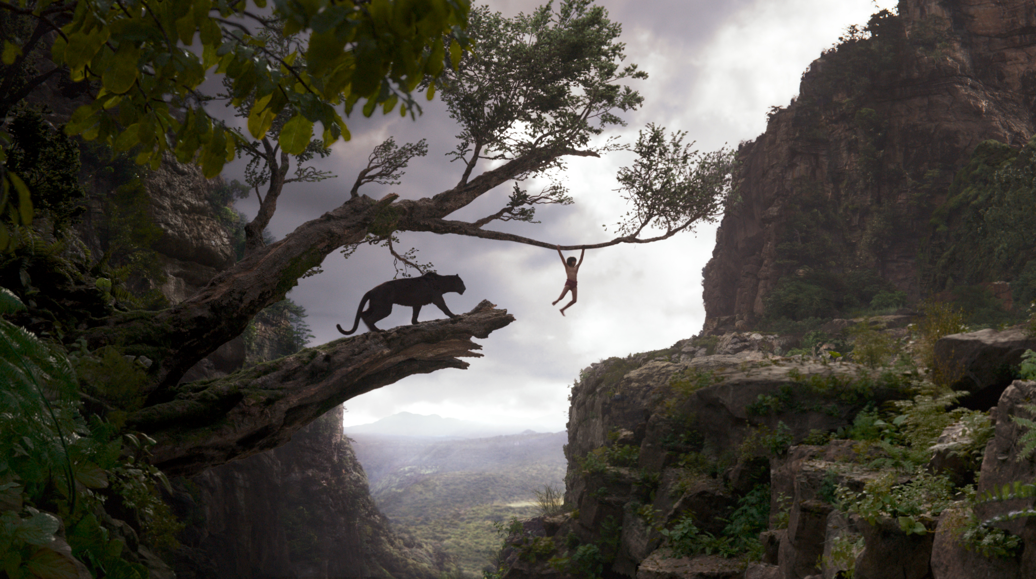the jungle book (2016) hd wallpaper | background image | 2098x1174