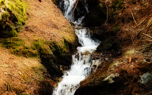 Earth Stream Water Creek Nature HD Wallpaper | Background Image