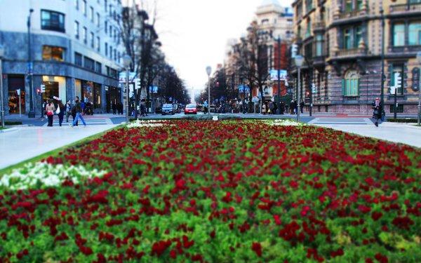 Man Made City Cities Street Bilbao Spain Tilt Shift HD Wallpaper | Background Image
