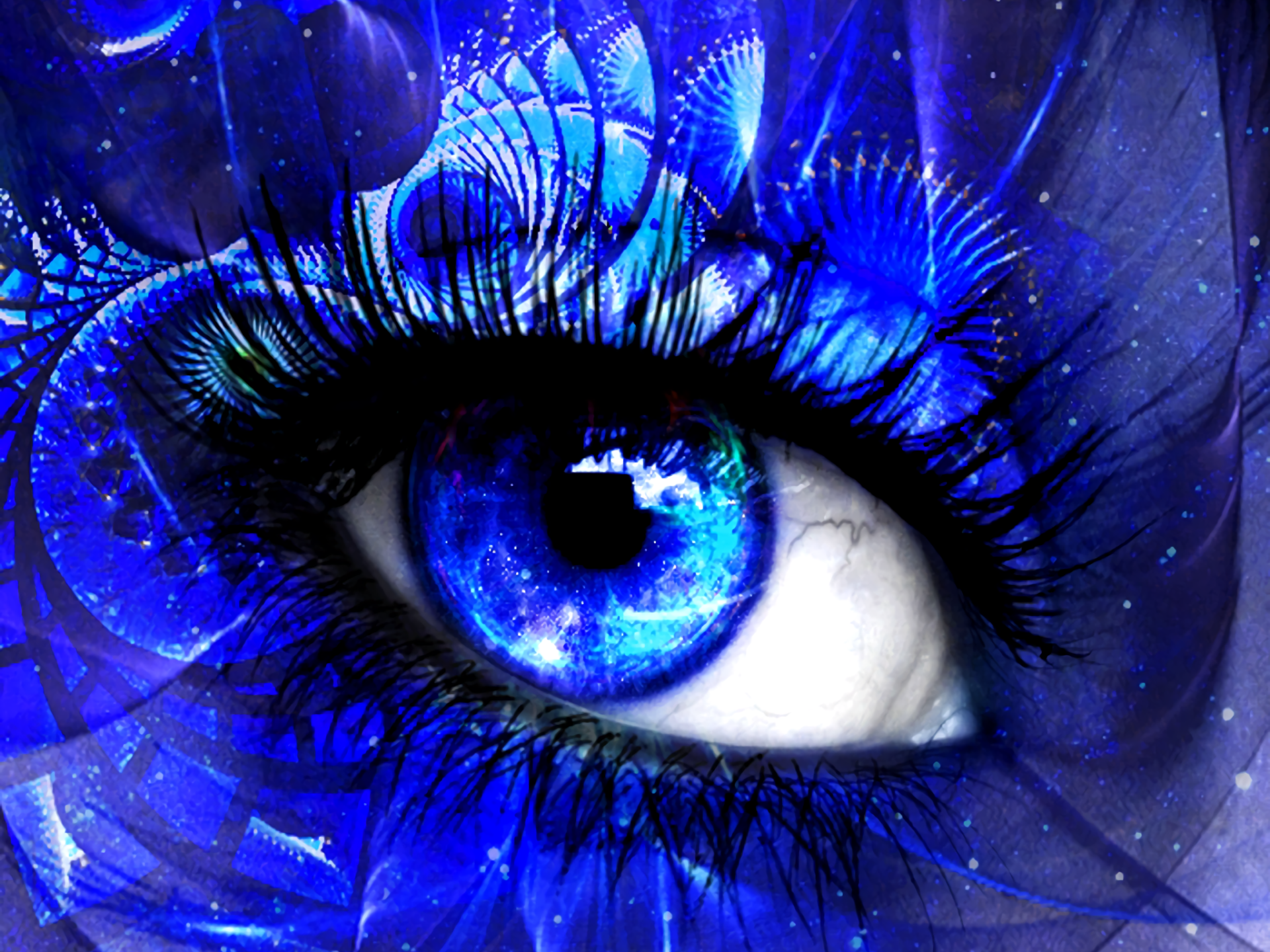 Wallpapers ID:697337