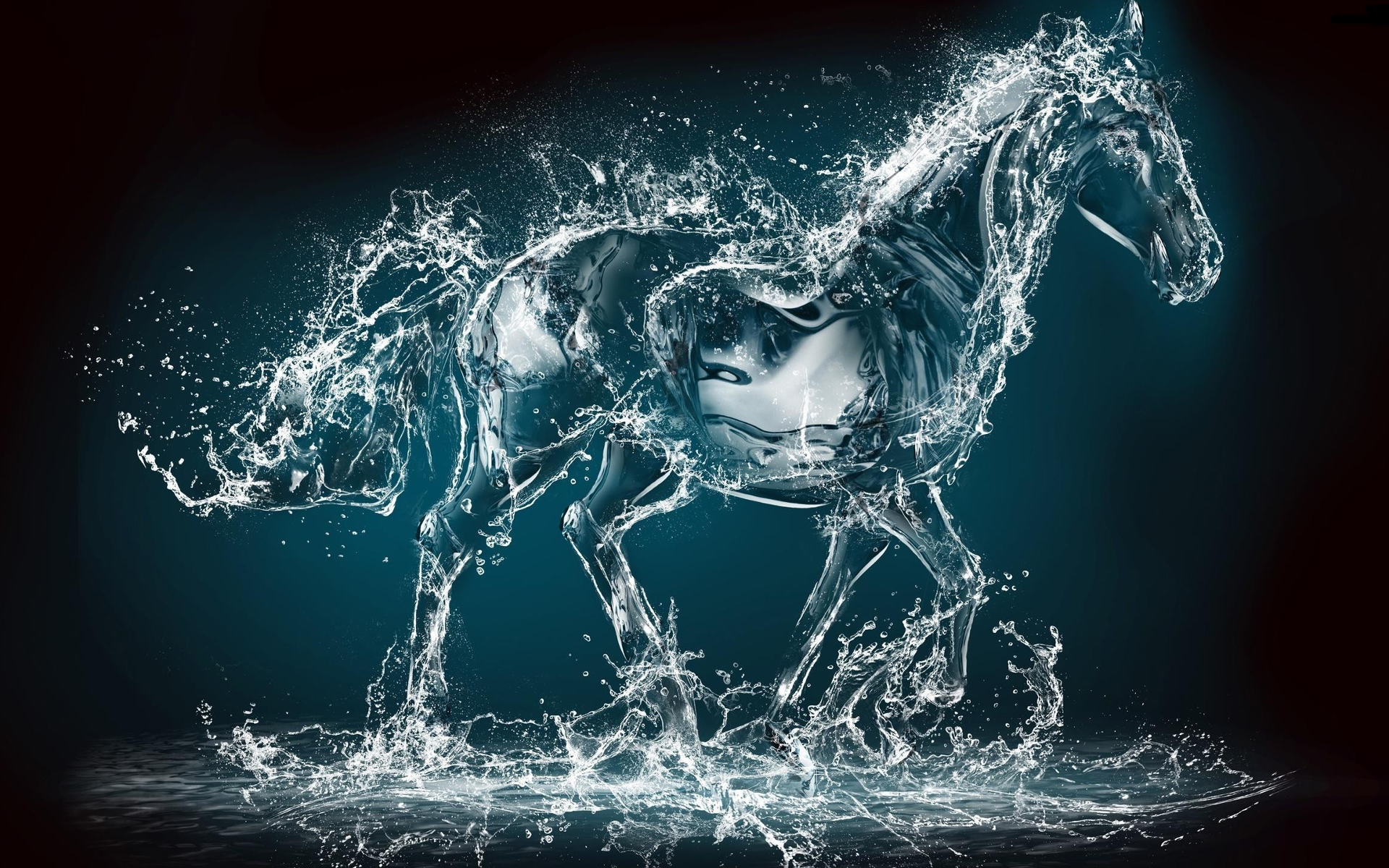 Water Horse Full HD Wallpaper and Background | 1920x1200 ...