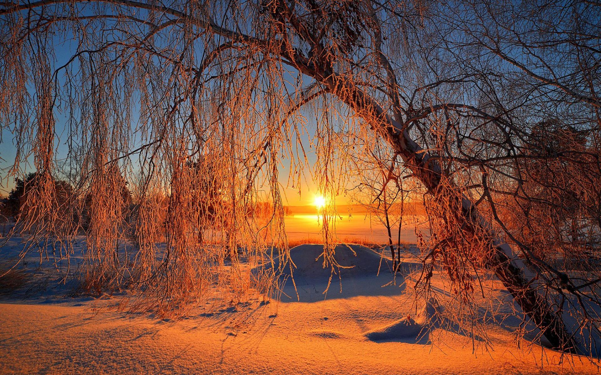 Fondo Pantalla Atardecer Navideño: Winter Sunset HD Wallpaper