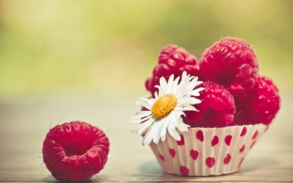 Food Raspberry Berry Fruit Close-Up HD Wallpaper | Background Image