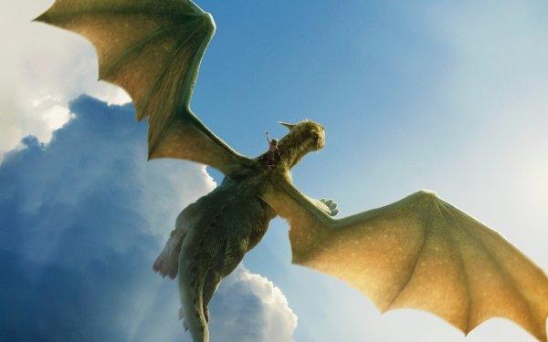 Movie Pete's Dragon (2016) Pete's Dragon Oakes Fegley Dragon Elliot HD Wallpaper | Background Image