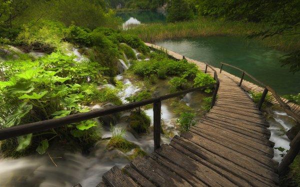 Earth Waterfall Waterfalls Plitvice Lake National Park Forest Green Boardwalk HD Wallpaper | Background Image