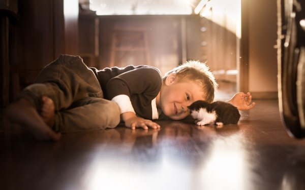 Photography Child Little Boy Kitten HD Wallpaper | Background Image