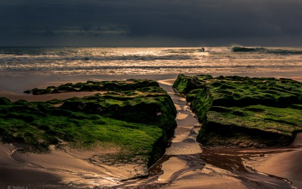 Photography Beach Sand Ocean Surfer Portugal HD Wallpaper | Background Image
