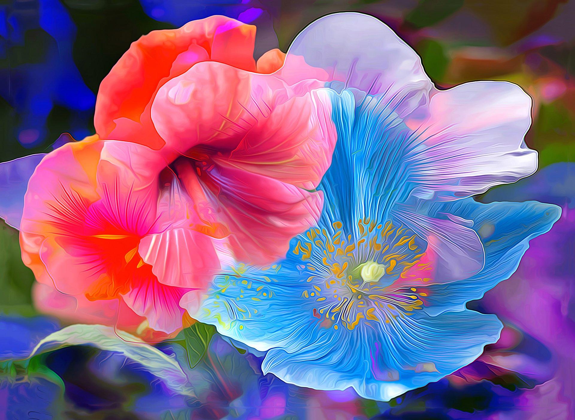 Abstract Flower Painting Hd Wallpaper Hintergrund