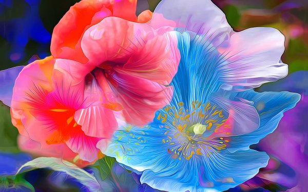 Artistic Flower Flowers Painting Hibiscus Poppy Anemone Colors HD Wallpaper   Background Image