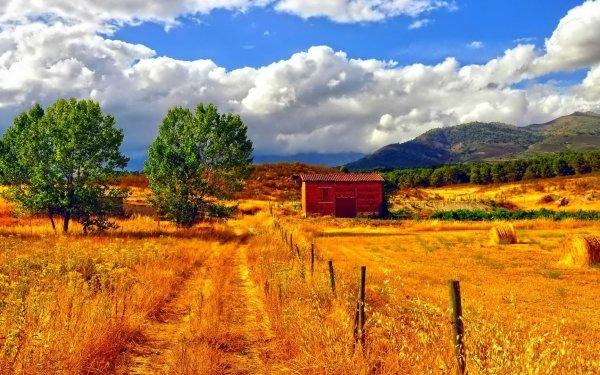 Earth Field Fall Foliage Barn Haystack Golden Tree HD Wallpaper | Background Image