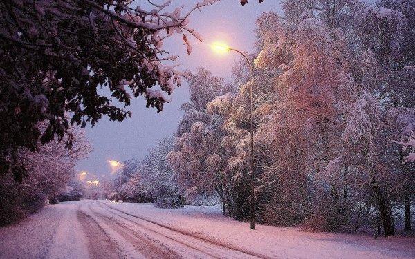 Fotografía Invierno Tierra Carretera Snow Dusk Árbol Street Light Fondo de pantalla HD | Fondo de Escritorio