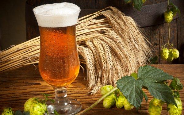 Food Beer Glass Alcohol Still Life Hop HD Wallpaper | Background Image