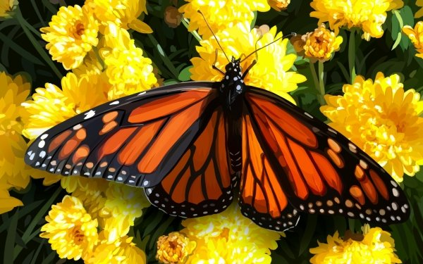 Animal Butterfly Artistic Insect Flower Yellow Flower HD Wallpaper   Background Image