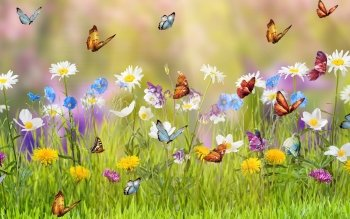 74 Spring HD Wallpapers Backgrounds Wallpaper Abyss