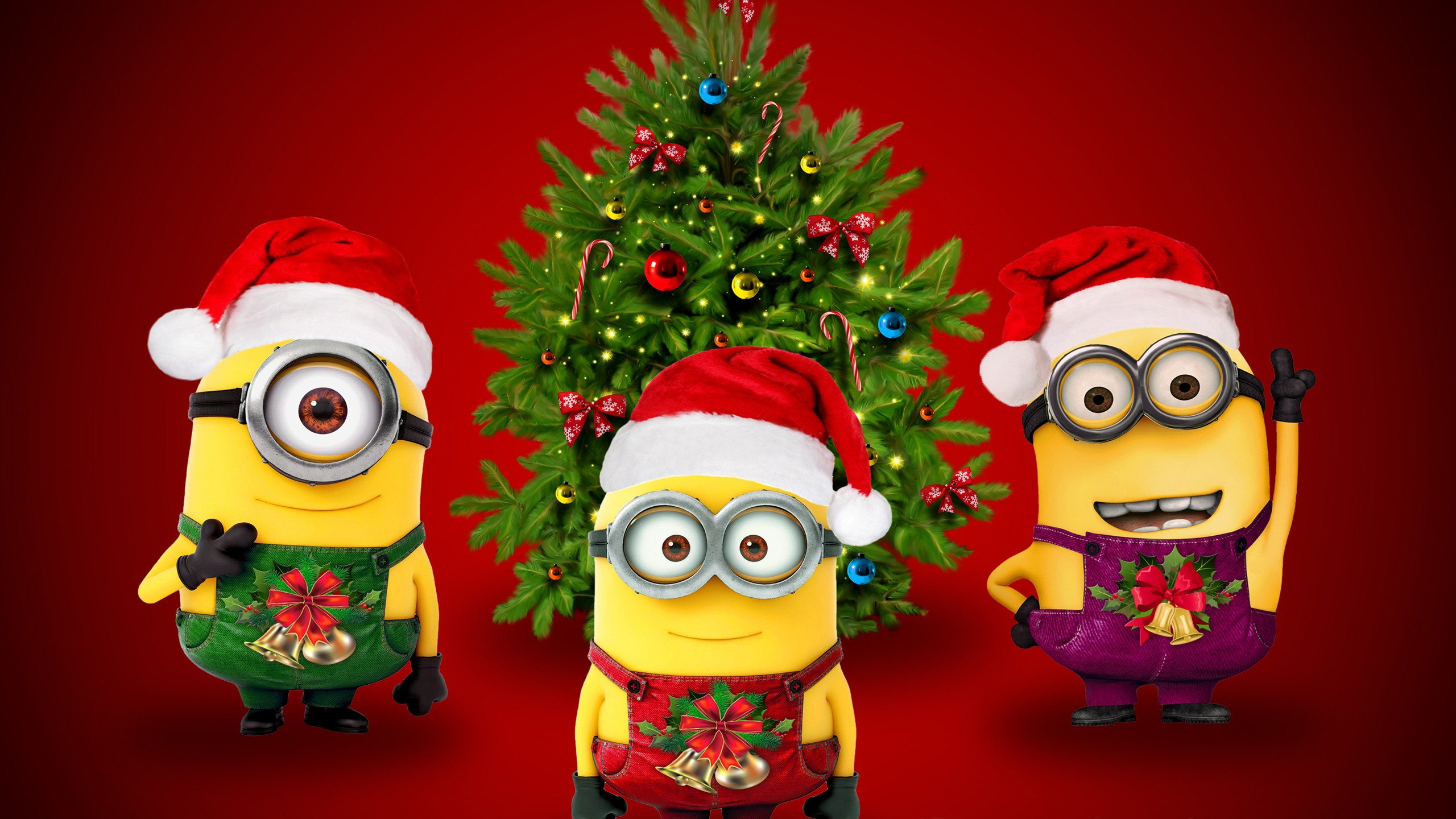 Minions Christmas Hd Wallpaper Background Image 2560x1440 Id 775263 Wallpaper Abyss