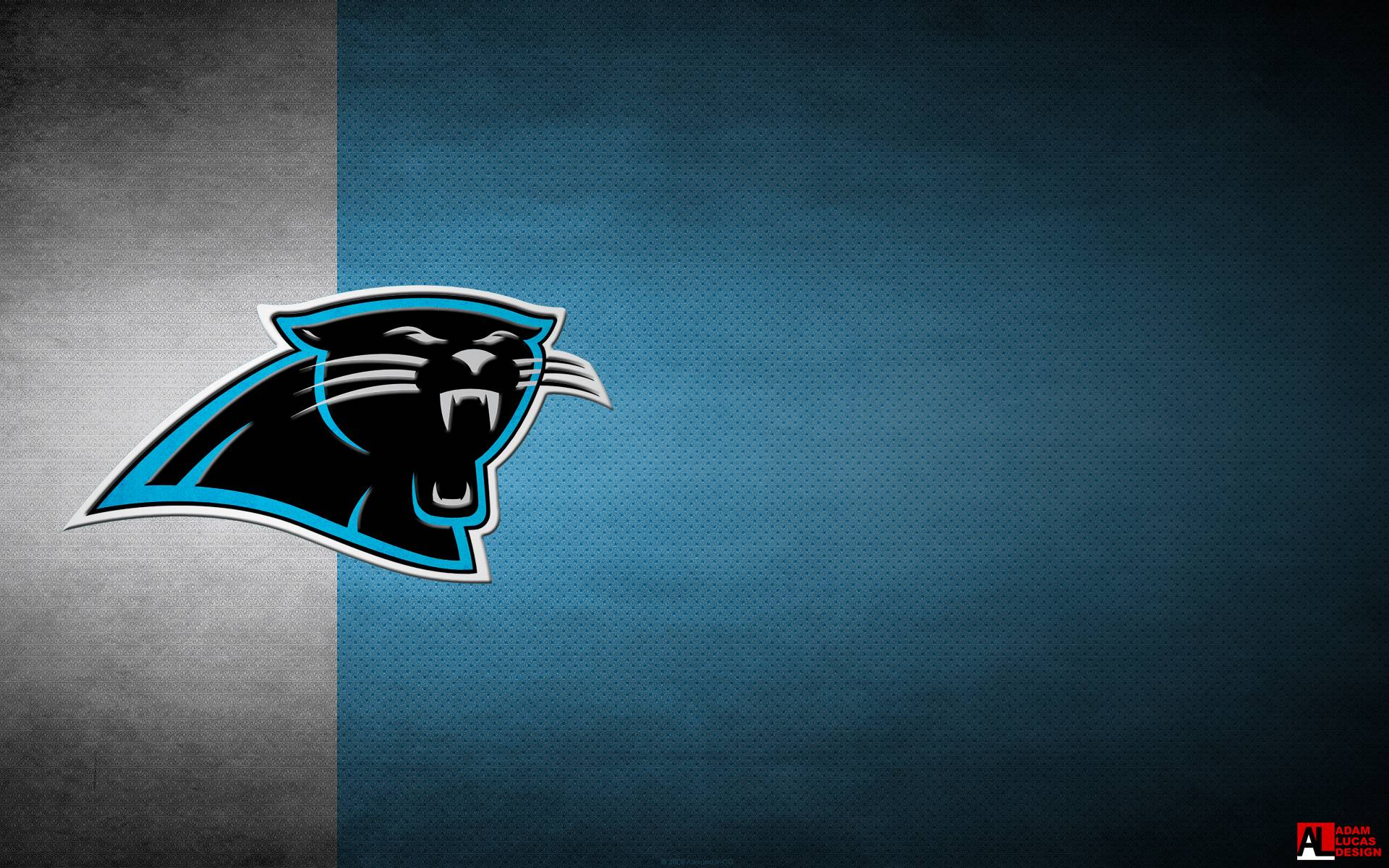 Carolina Panthers HD Wallpaper | Background Image | 1920x1200 | ID:782773 - Wallpaper Abyss