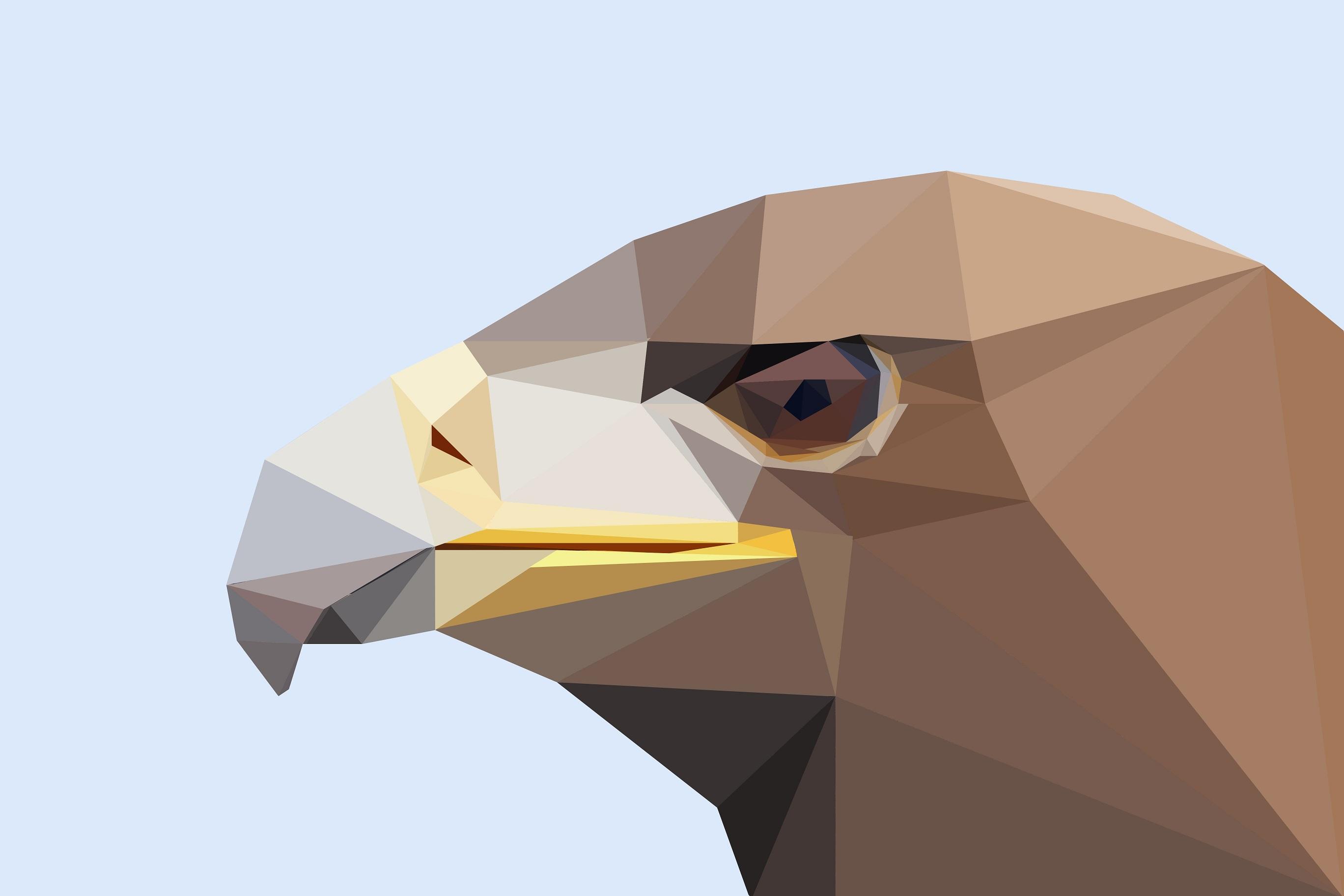 Popular Wallpaper Bird Minimalist - 785870  Gallery_545082.jpg