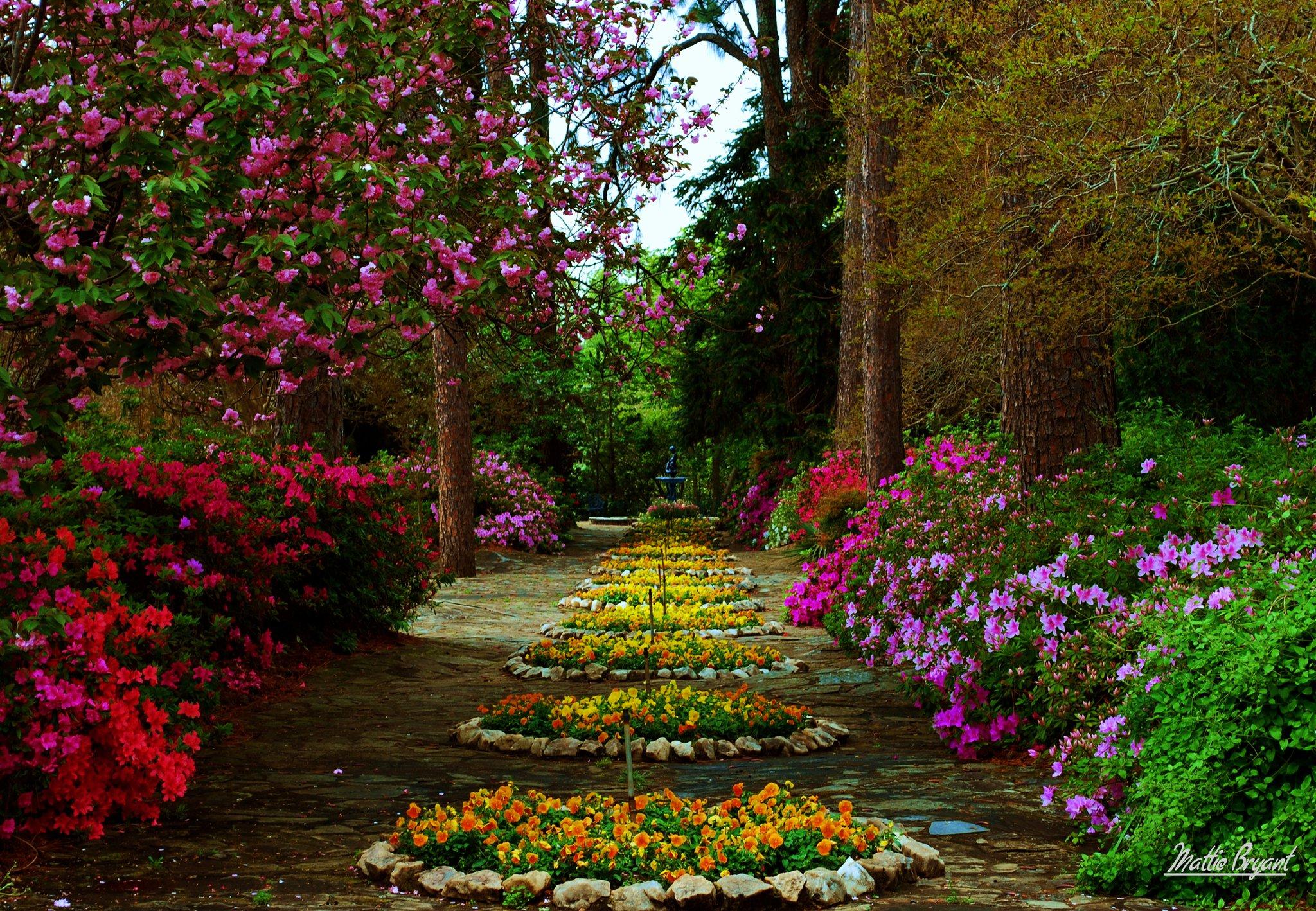 Flower Garden HD Wallpaper | Background Image | 2048x1418 | ID ...