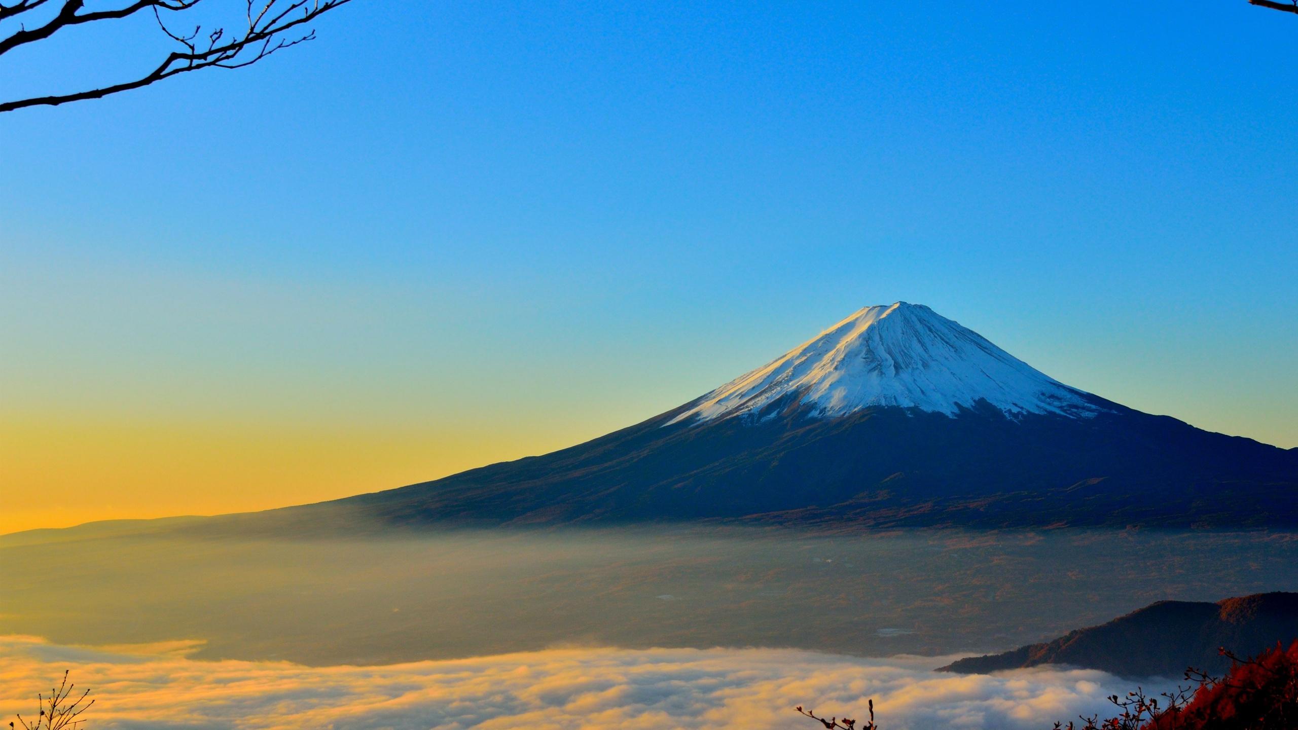 Mount Fuji Hd Wallpaper Background Image 2560x1440