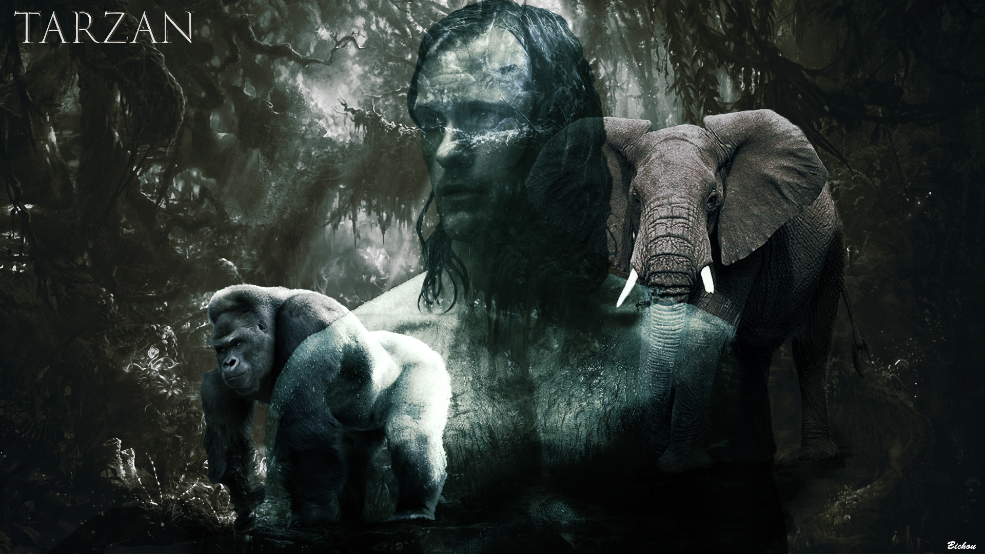 The legend of tarzan hd wallpaper background image - Tarzan wallpaper ...