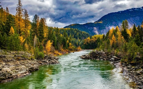 Earth River Nature Fall Forest Landscape HD Wallpaper | Background Image