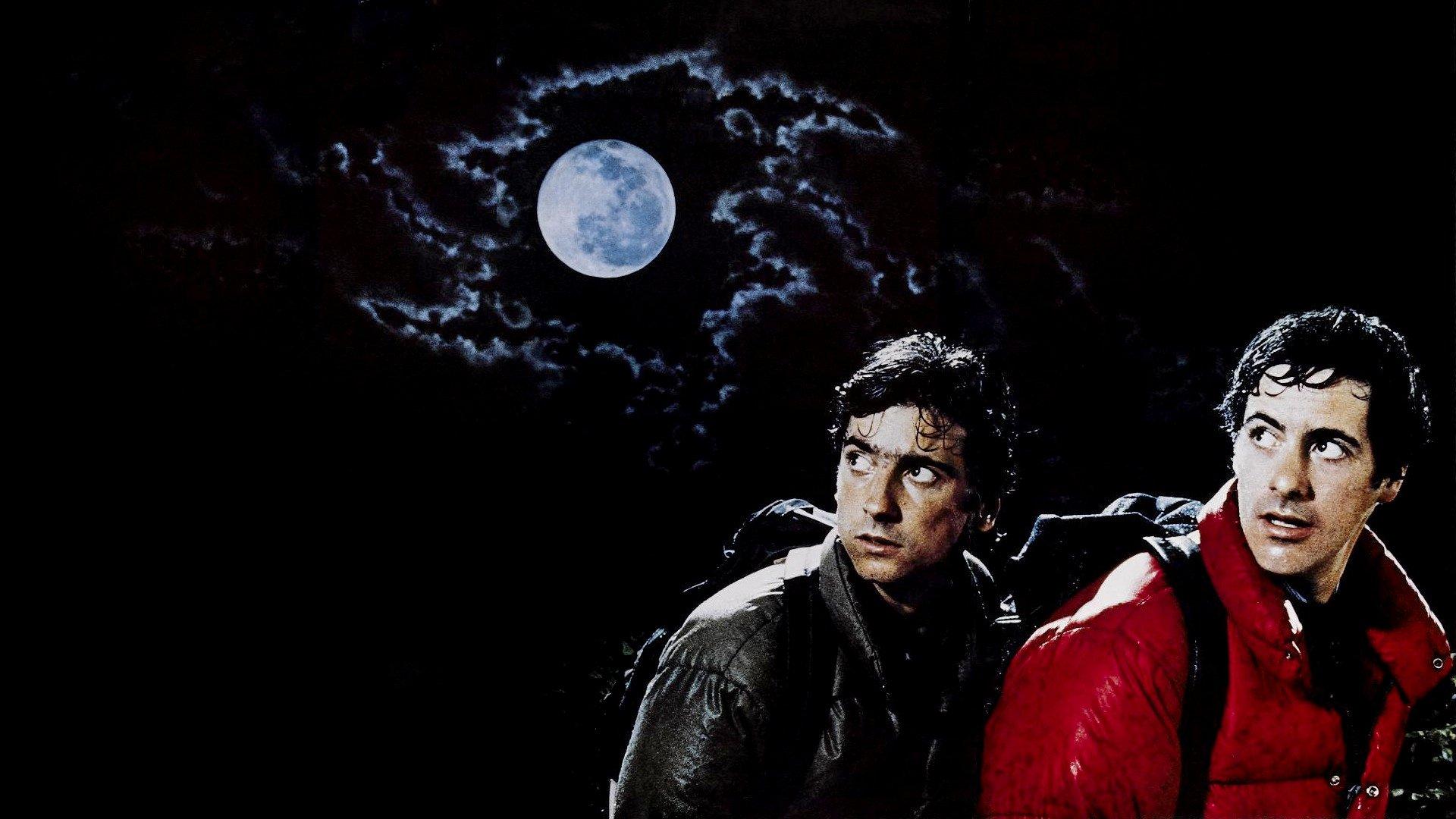 An American Werewolf In London Hd Wallpaper Background Image