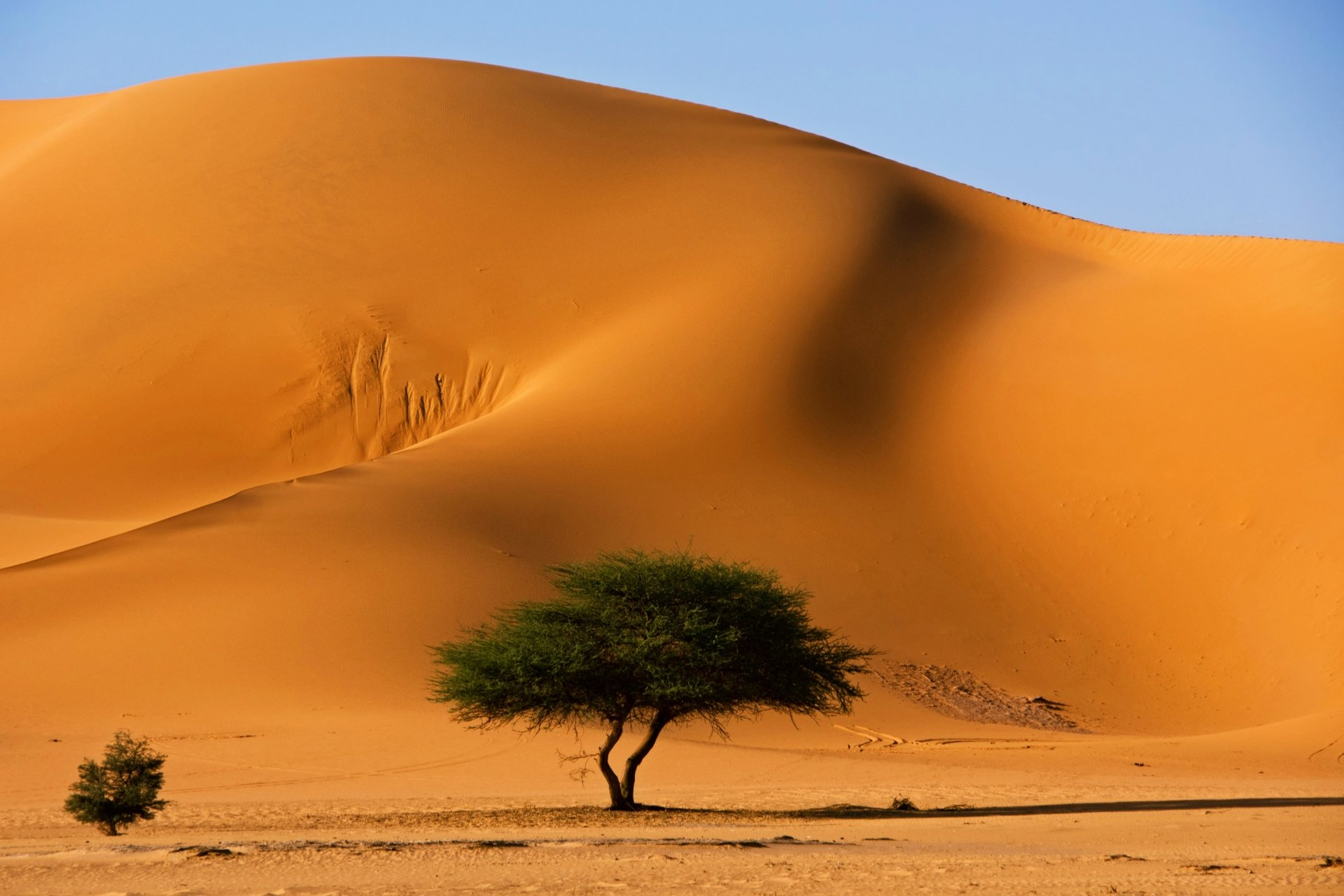 Sand Dunes - Algeria 4...