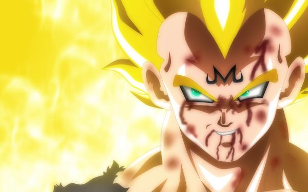 Anime Dragon Ball Z Dragon Ball Vegeta HD Wallpaper   Background Image
