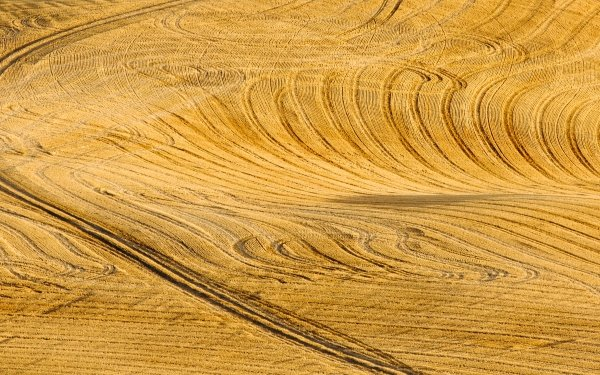Earth Field Nature Aerial Corn HD Wallpaper | Background Image