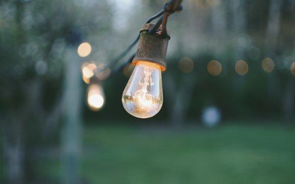Man Made Light Bulb Depth Of Field HD Wallpaper   Background Image