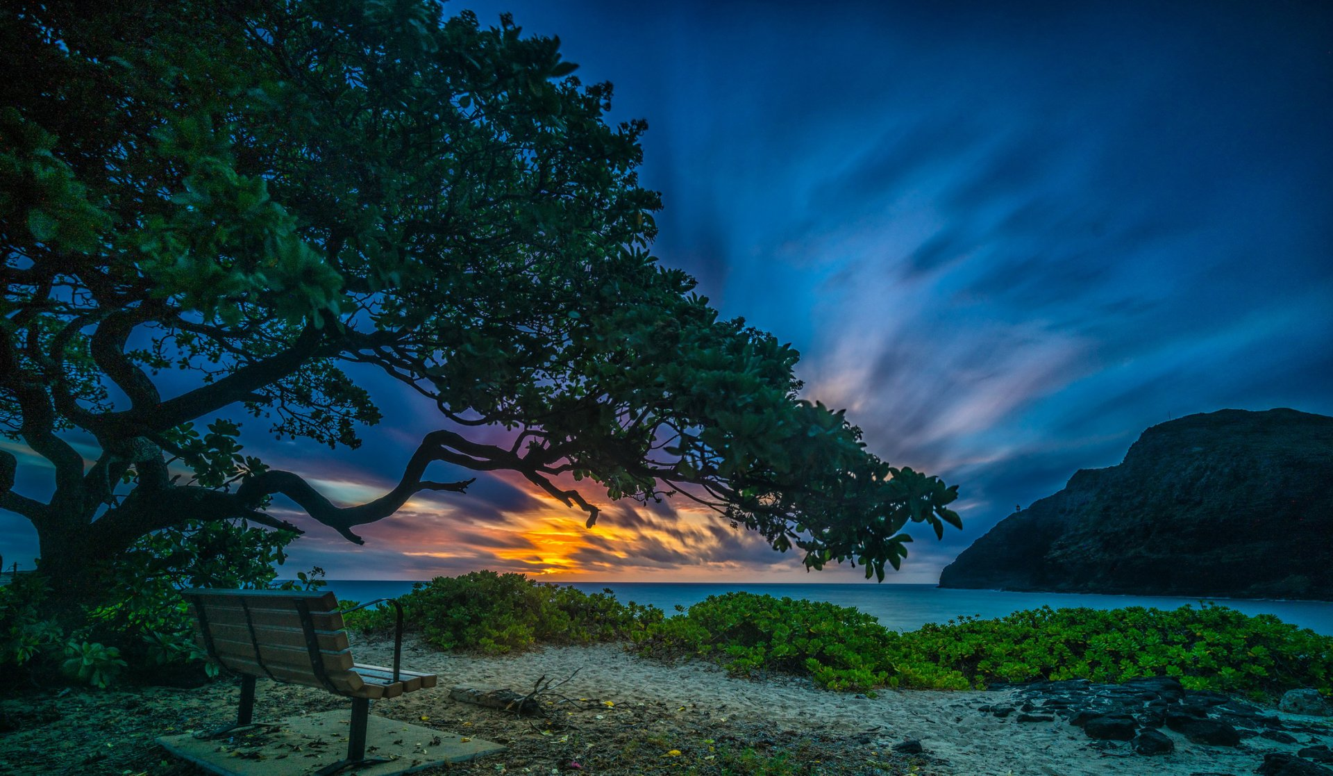 Man Made - Bench  Lake Sunset Tree Tropical Horizon Wallpaper