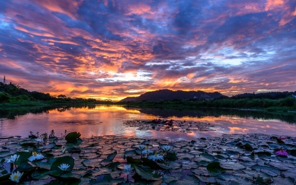 Earth Lake Lakes Nature Water Lily Cloud Sky Sunset Landscape HD Wallpaper | Background Image