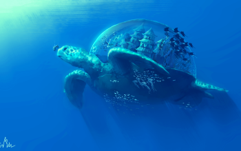 29 4k Ultra Hd Turtle Wallpapers Background Images Wallpaper Abyss