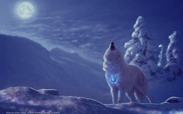 Animal Wolf White Wolf Winter Night Tree Snow Moon HD Wallpaper   Background Image