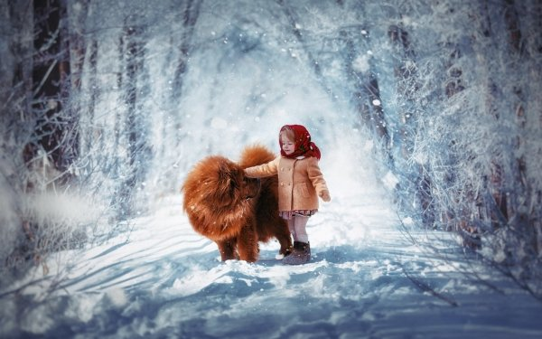 Photography Child Little Girl Dog Chow Chow Cute Snow Winter Road HD Wallpaper   Background Image