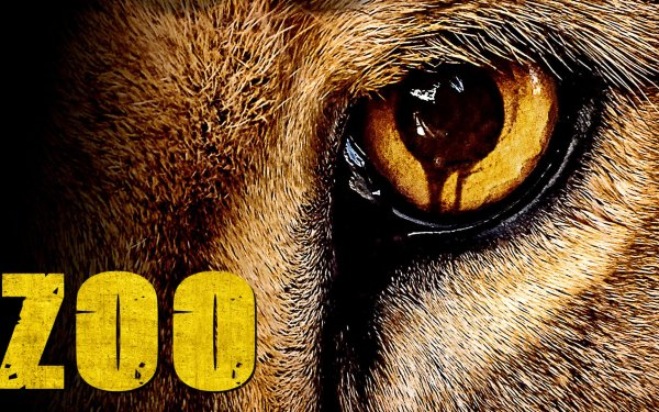 TV Show Zoo HD Wallpaper | Background Image