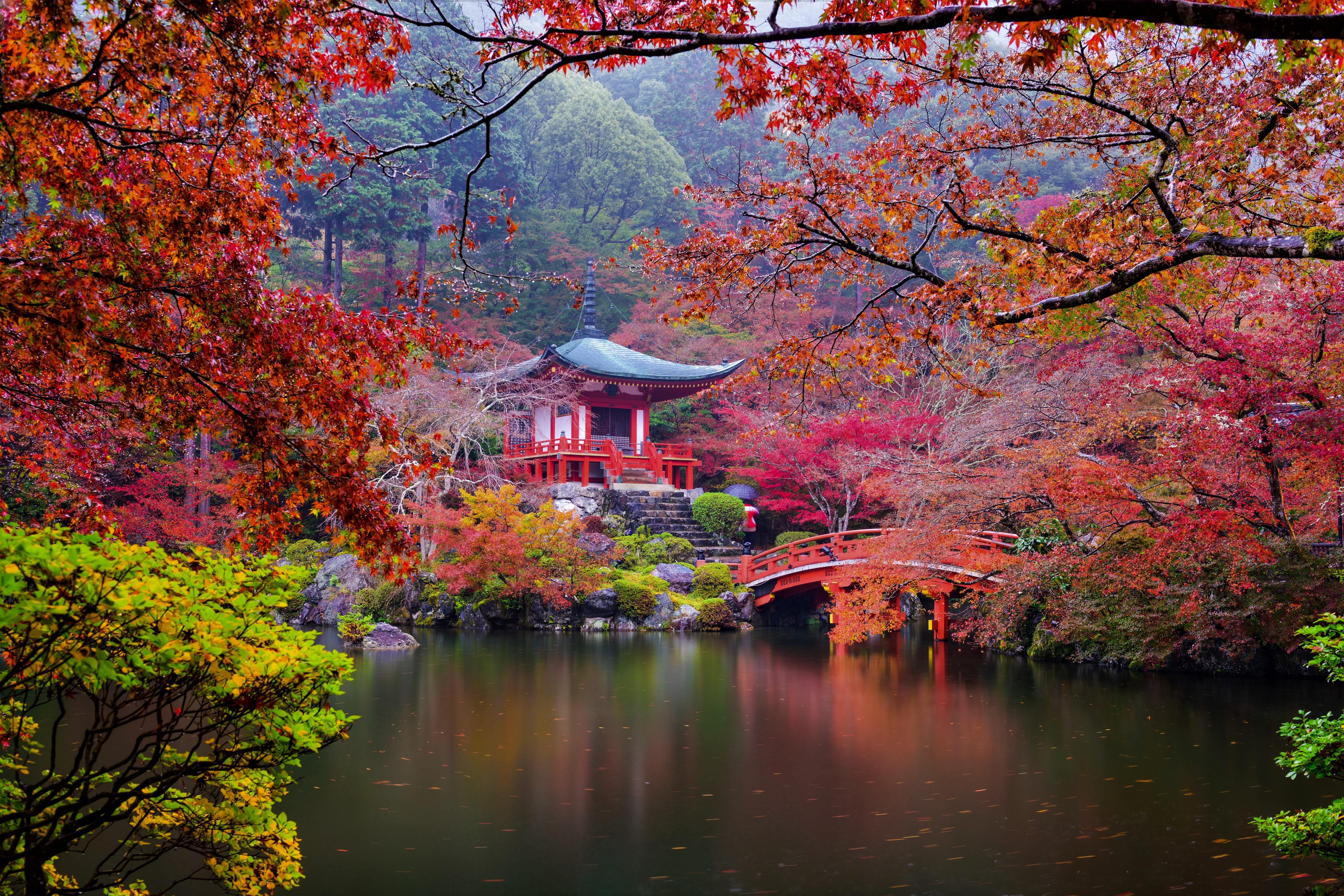 Autumn Japanese Garden 5k Retina Ultra HD Wallpaper