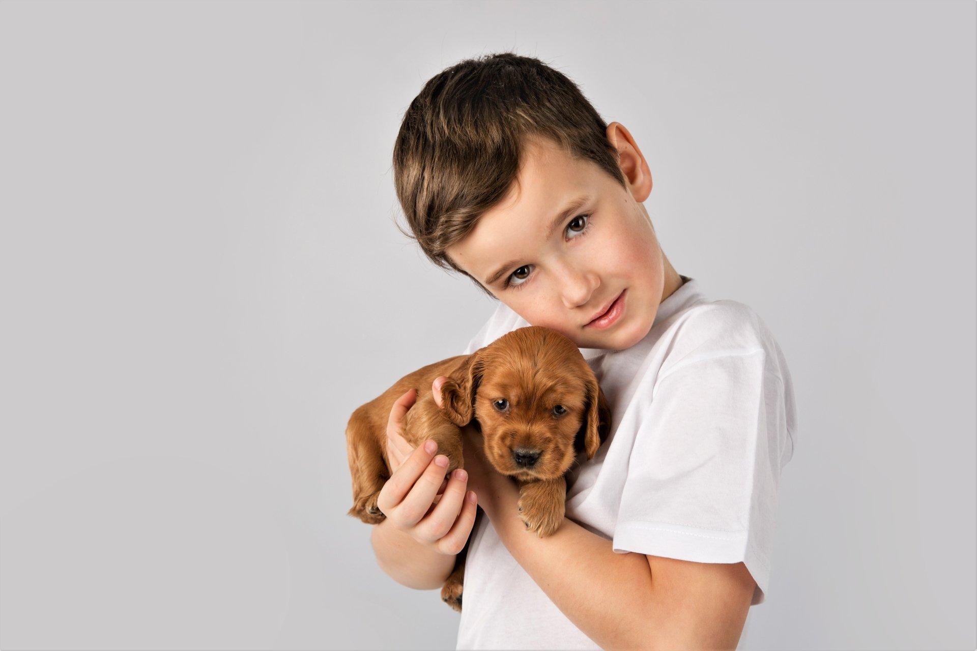 Photography - Child  Baby Animal Boy Little Boy Cute Puppy Wallpaper