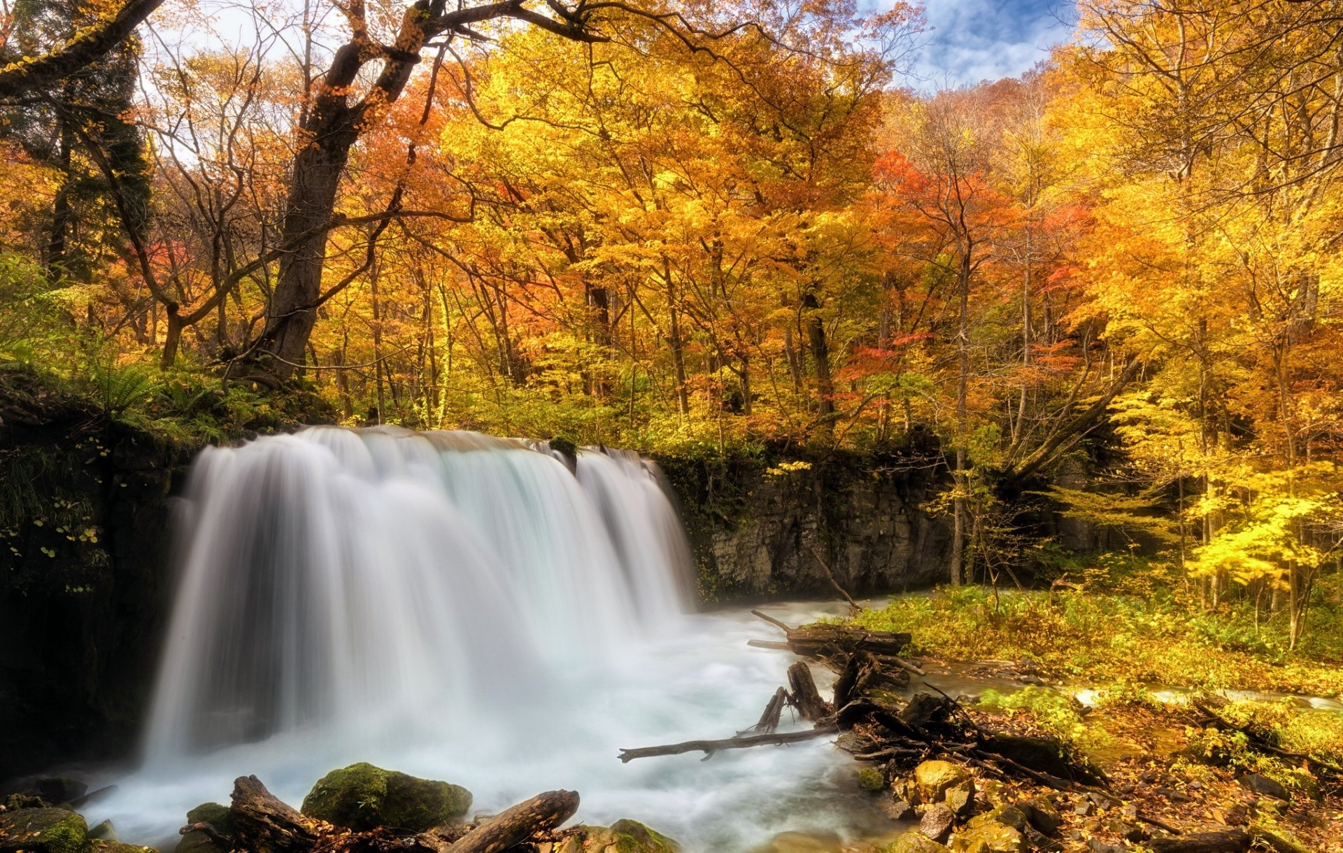 Earth - Waterfall  Nature Fall Foliage Forest Foam Wallpaper